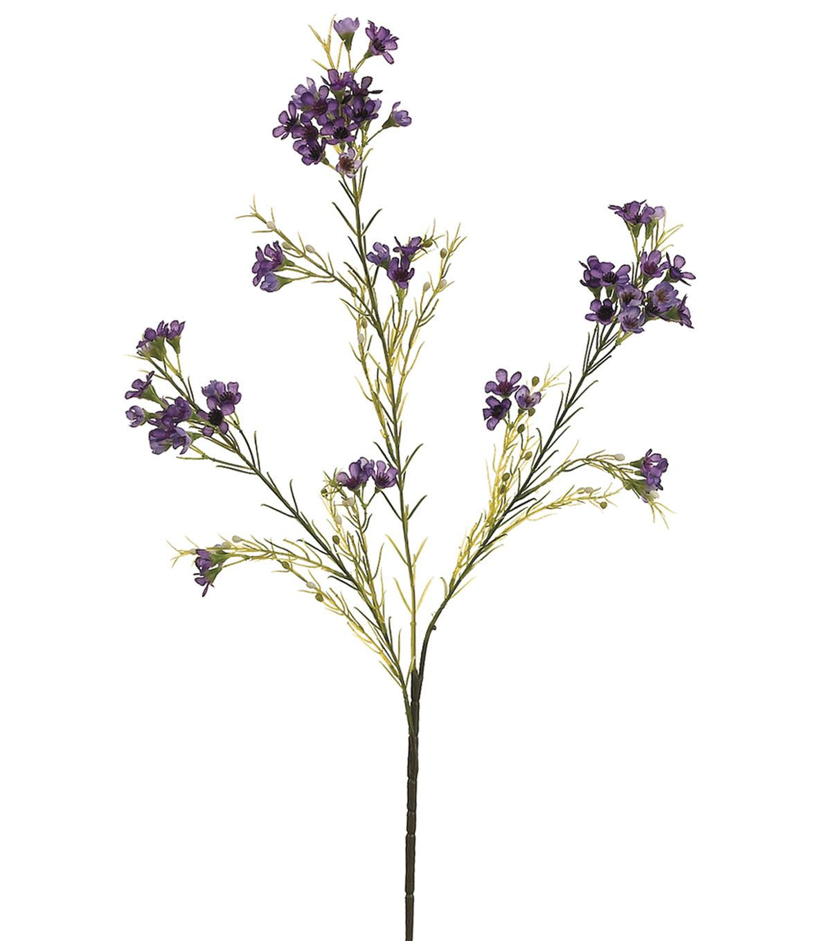 """Names Of Purple Flowers For Wedding: Bloom Room 27"""" Waxflower Spray X3 With 72 Flower And 36"""