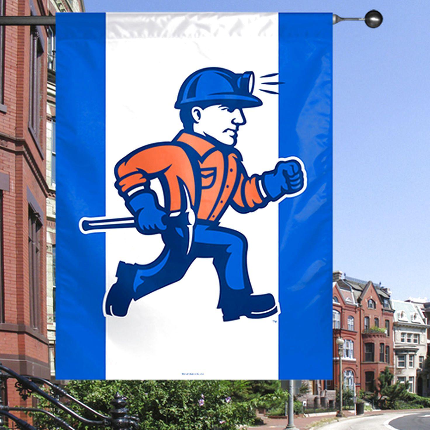 Wisconsin-Platteville Pioneers 27'' x 37'' Vertical Banner - $18.99