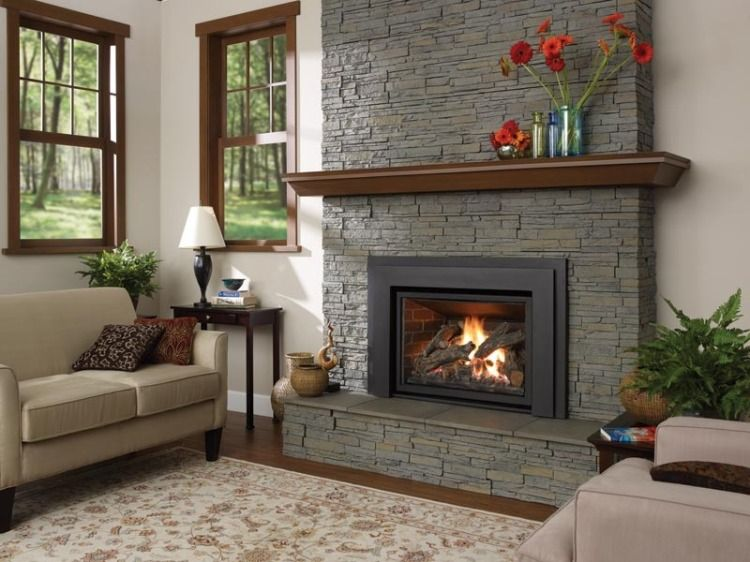 6 Astonishing Gas Fireplace Inserts Nj Picture Idea Gas Fireplace Insert Fireplace Fireplace Inserts