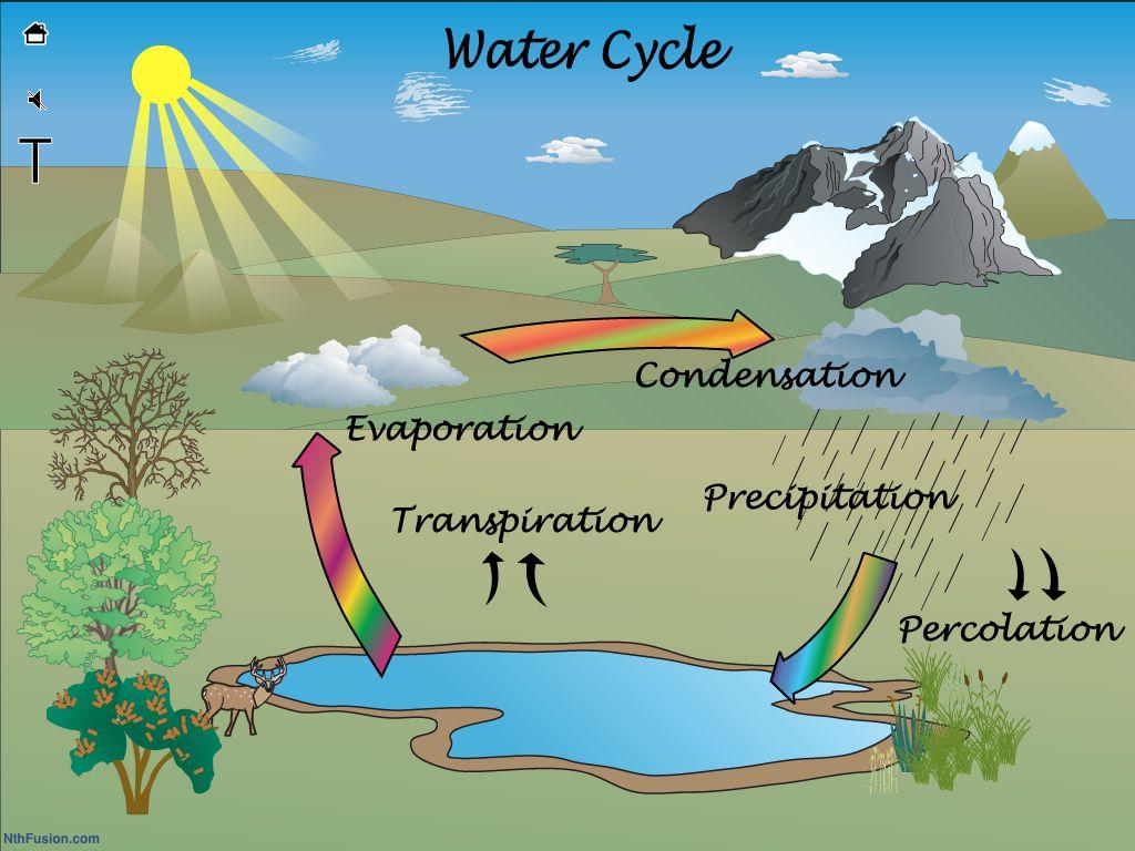water cycle diagram percolation [ 1024 x 768 Pixel ]