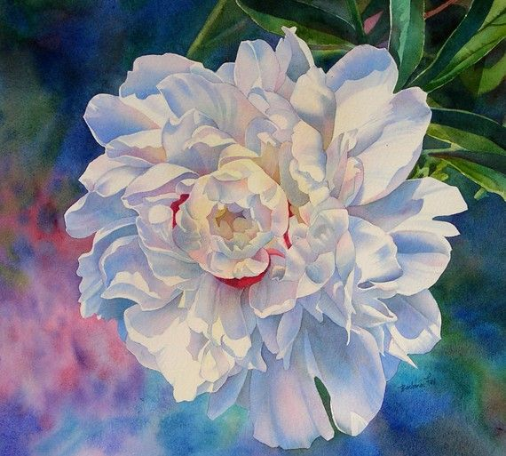 Royal White Peony Print From Watercolor Painting By Bfoxart