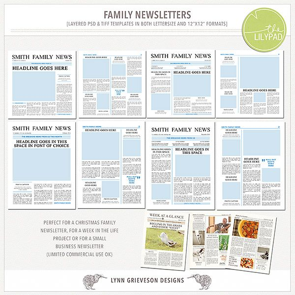 Family Newsletter Templates By Lynn Grieveson Designs Available