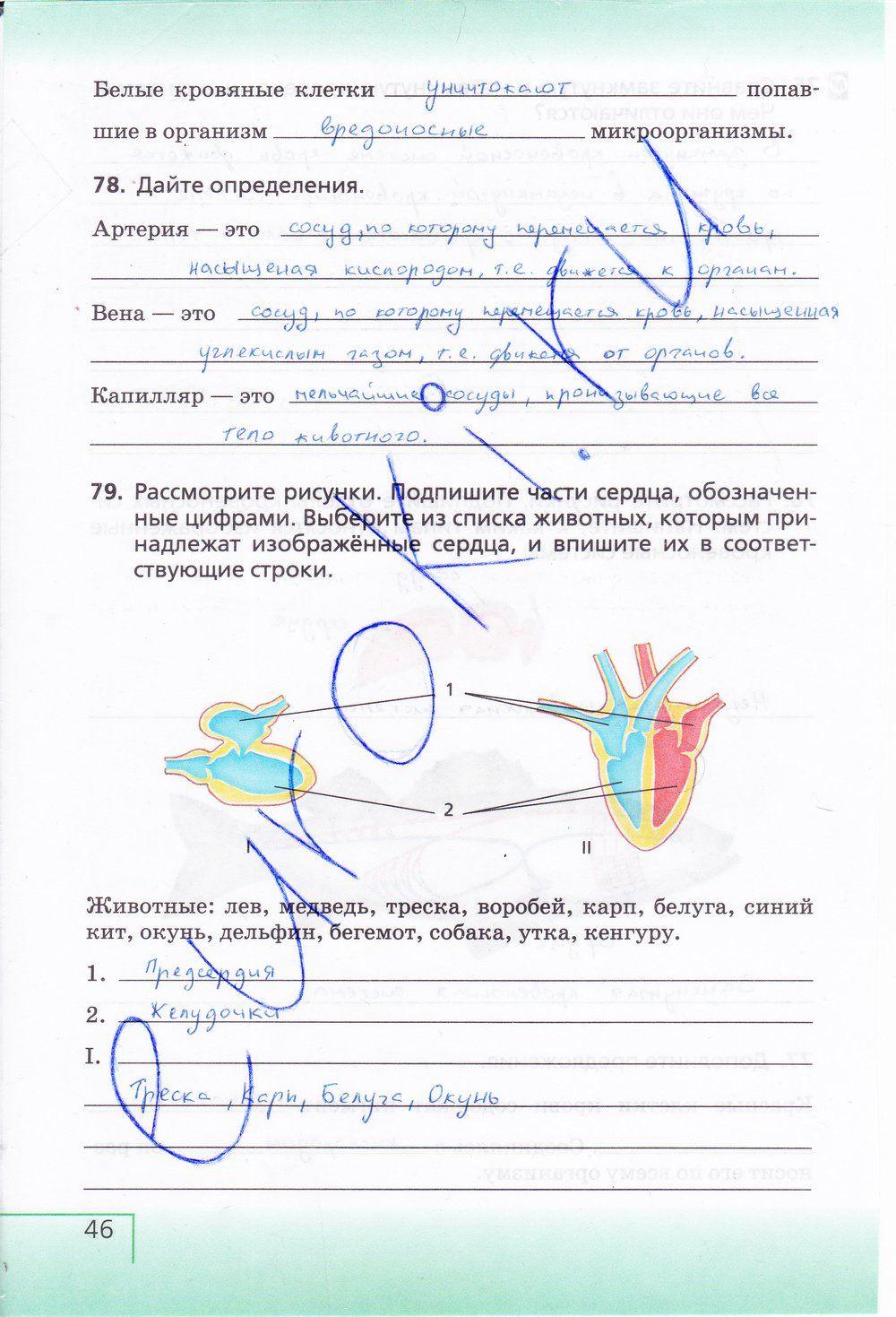 Гдз по русскому 5 класс разумовская львова капинос богданова тронина львова сергеева