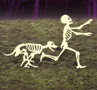 one 1 dog skeleton chasing halloween or more to makepack of dog skeletons chasing human skeleton zombies dogs for yard halloween decor yikes