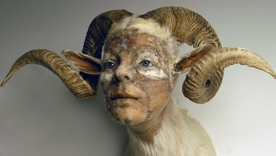 taxidermie humaine