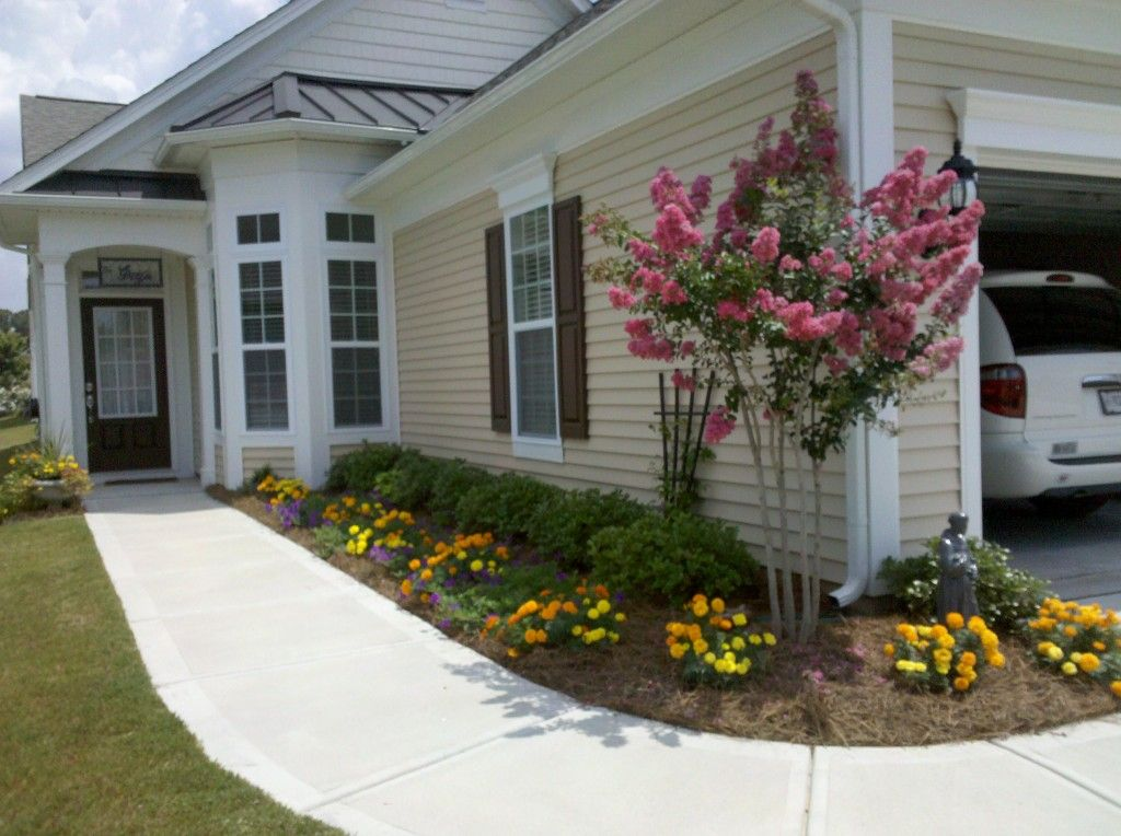 Low bushes to soften ground house transition small tree for Entryway garden designs