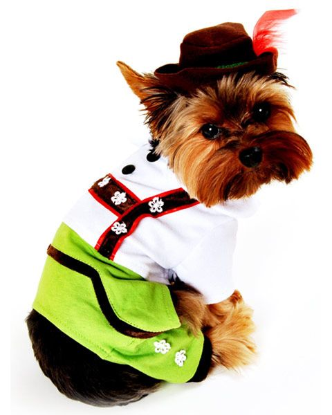 German Shepherd Schnauzer Lederhosen Dog Costume Pet Halloween
