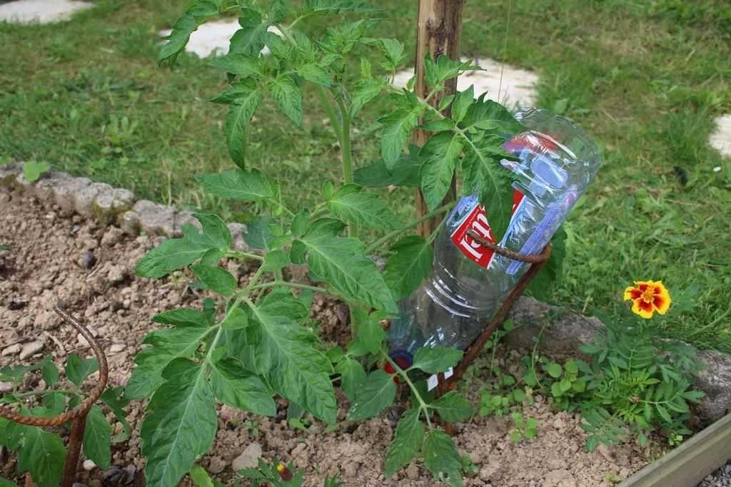 Epingle Sur Arrosage Et Irrigation