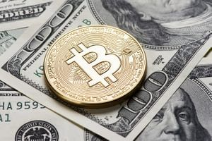 Should i use litecoin or bitcoin for forex trading