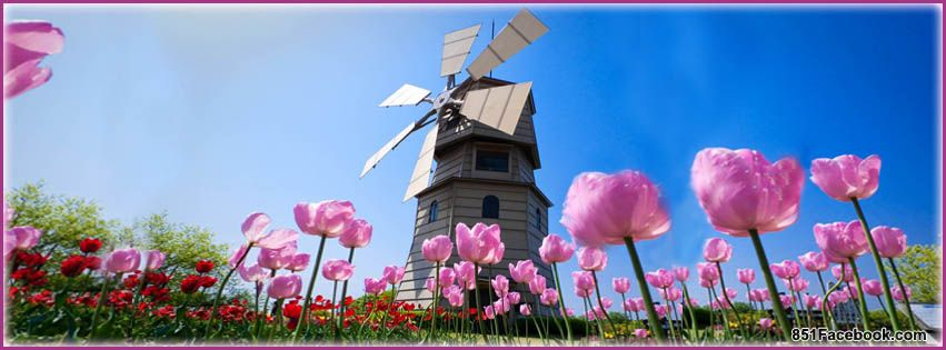 Spring Accommodation Facebook Covers: Seasons Facebook Timeline Covers ( Spring )