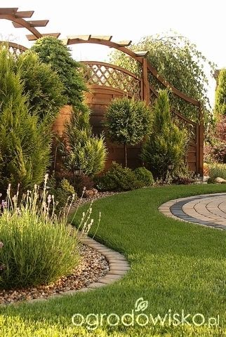 Lecę w kulki... - strona 193 - Forum ogrodnicze - Ogrodowisko #Fence backyard #Fence design #Fence diy #Fence ideas #Forum #kulki #Lecę #ogrodnicze #Ogrodowisko #strona