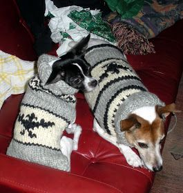 JOSSY , CUSTOM KNITS FOR DOGS and  Cowichan Indian