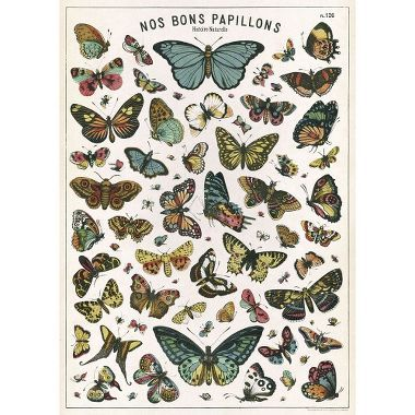 Photo of Butterfly Chart Flat Wrap | Paper Source