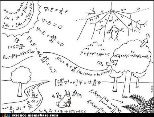 Physics Physics Everywhere