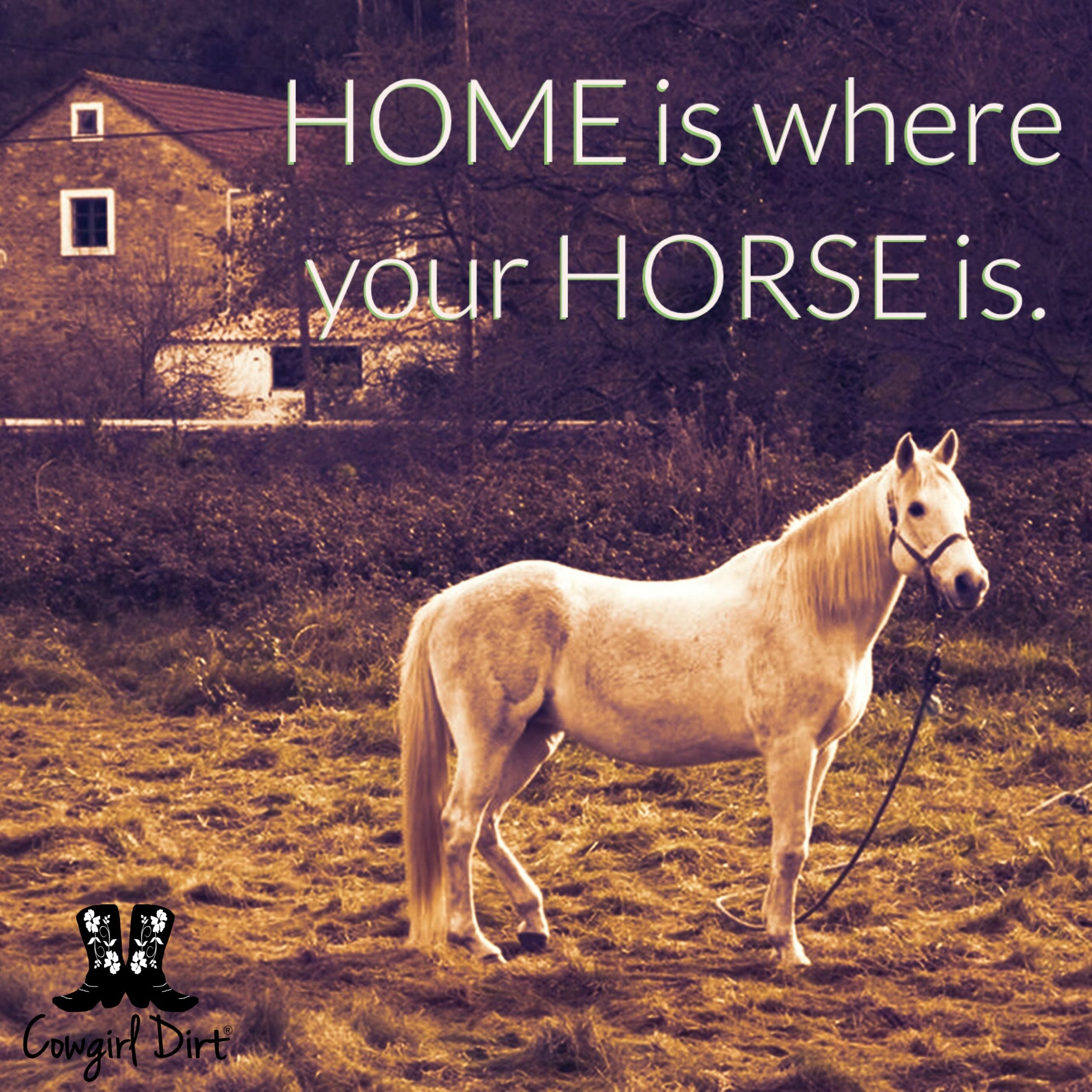 Cowgirl Dirt Quotes | Horses | Pinterest | Heste, Citater ...