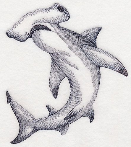 hammerhead shark sketch embroidery designs that i have