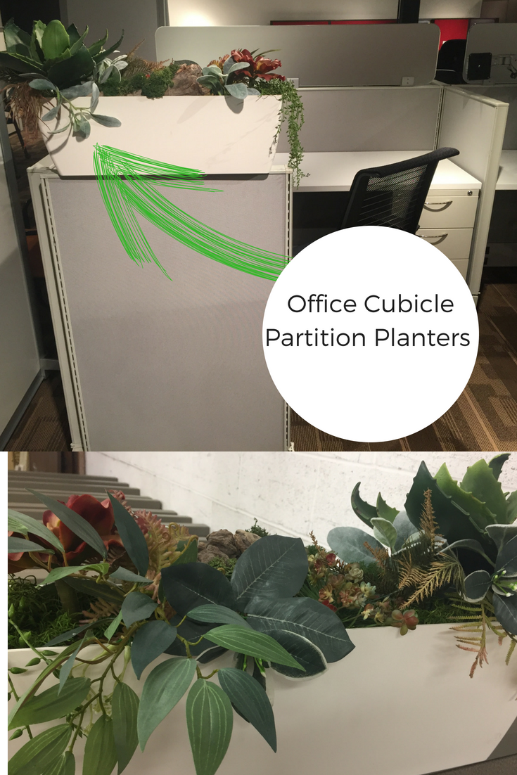Cubicle Wall Planter Cubicle Accessories Greencleandesigns In 2019 Cubicle Decor