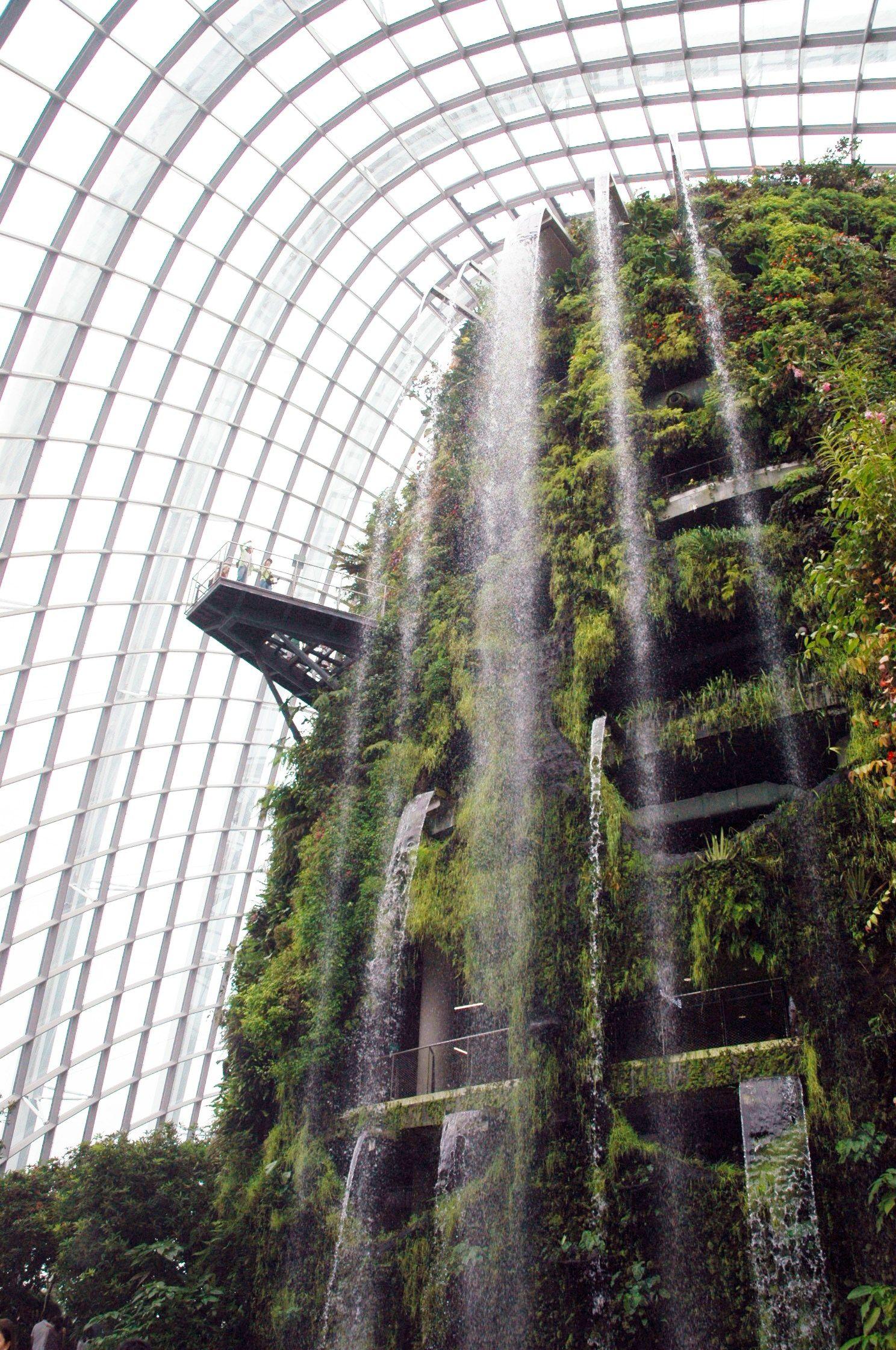 ddd9930c7fbd539f623b5b301cd39219 - Gardens By The Bay Cloud Forest Dome