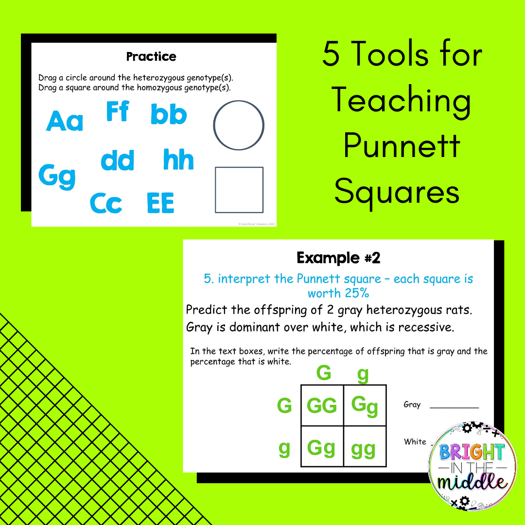 5 Tools For Teaching Punnett Squares