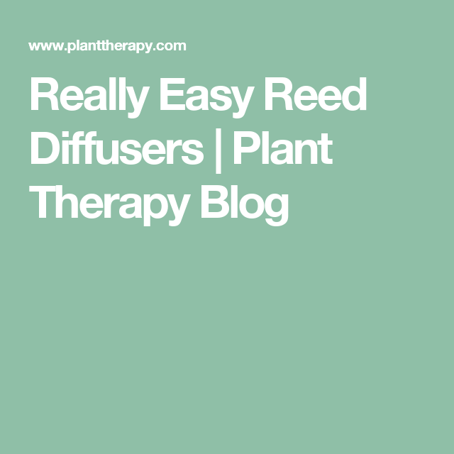 Really Easy Reed Diffusers | Plant Therapy Blog
