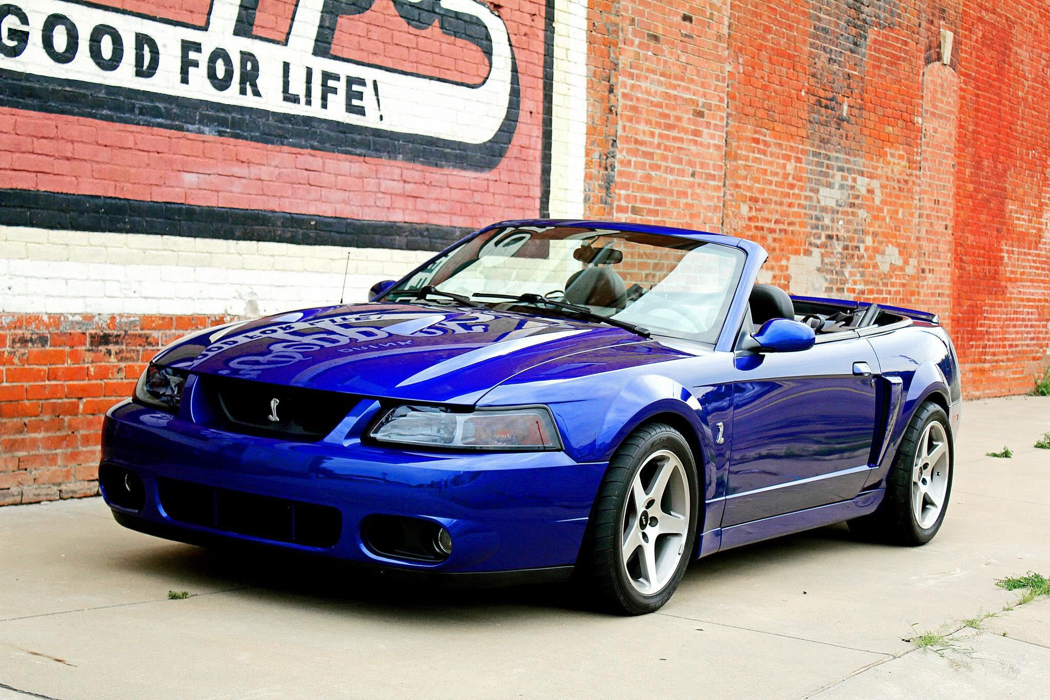 2003 ford mustang cobra convertible sonic blue sexy cars. Black Bedroom Furniture Sets. Home Design Ideas