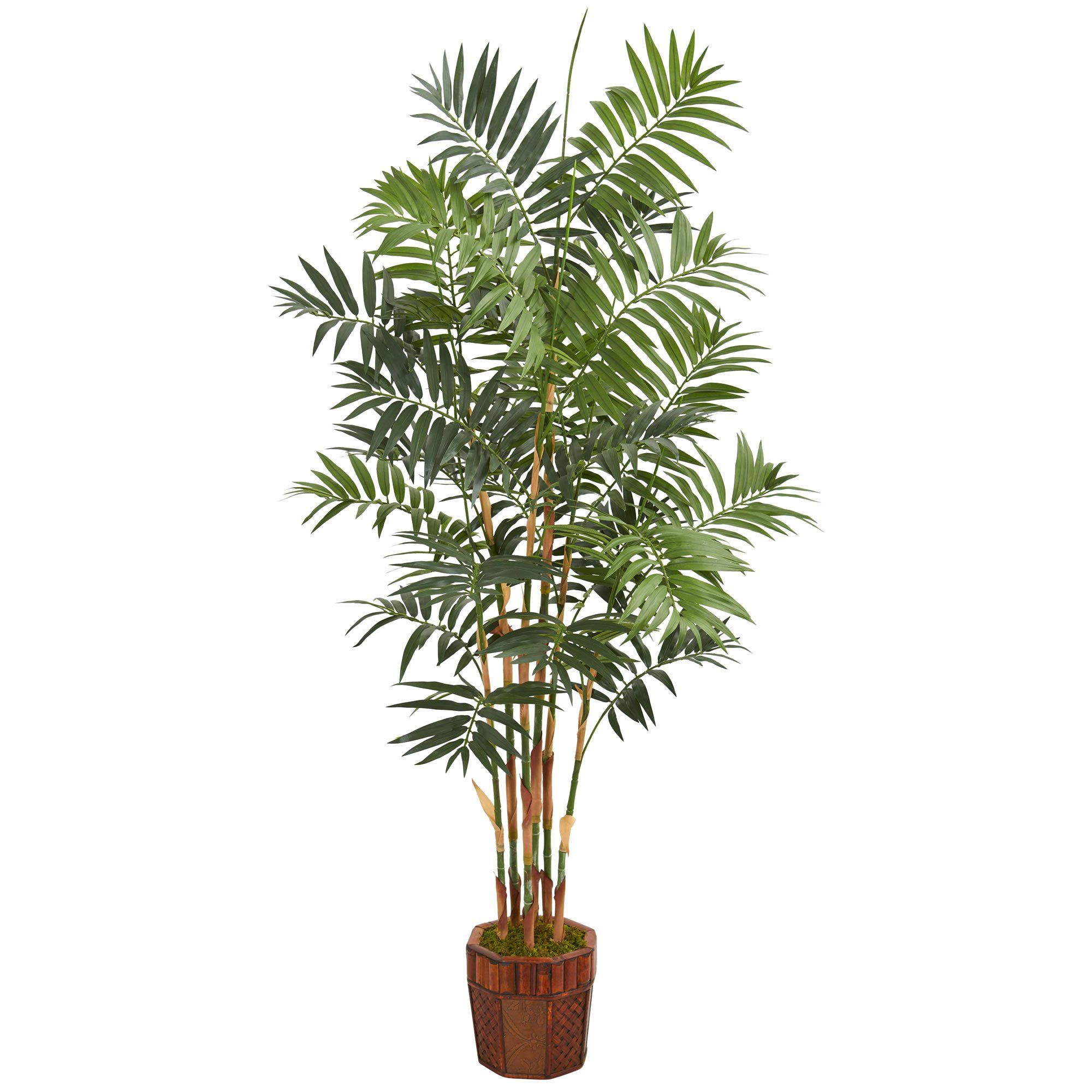 Photo of Nearly Natural 5605 5.5′ Artificial Green Bamboo Palm Tree in Decorative Wood Planter