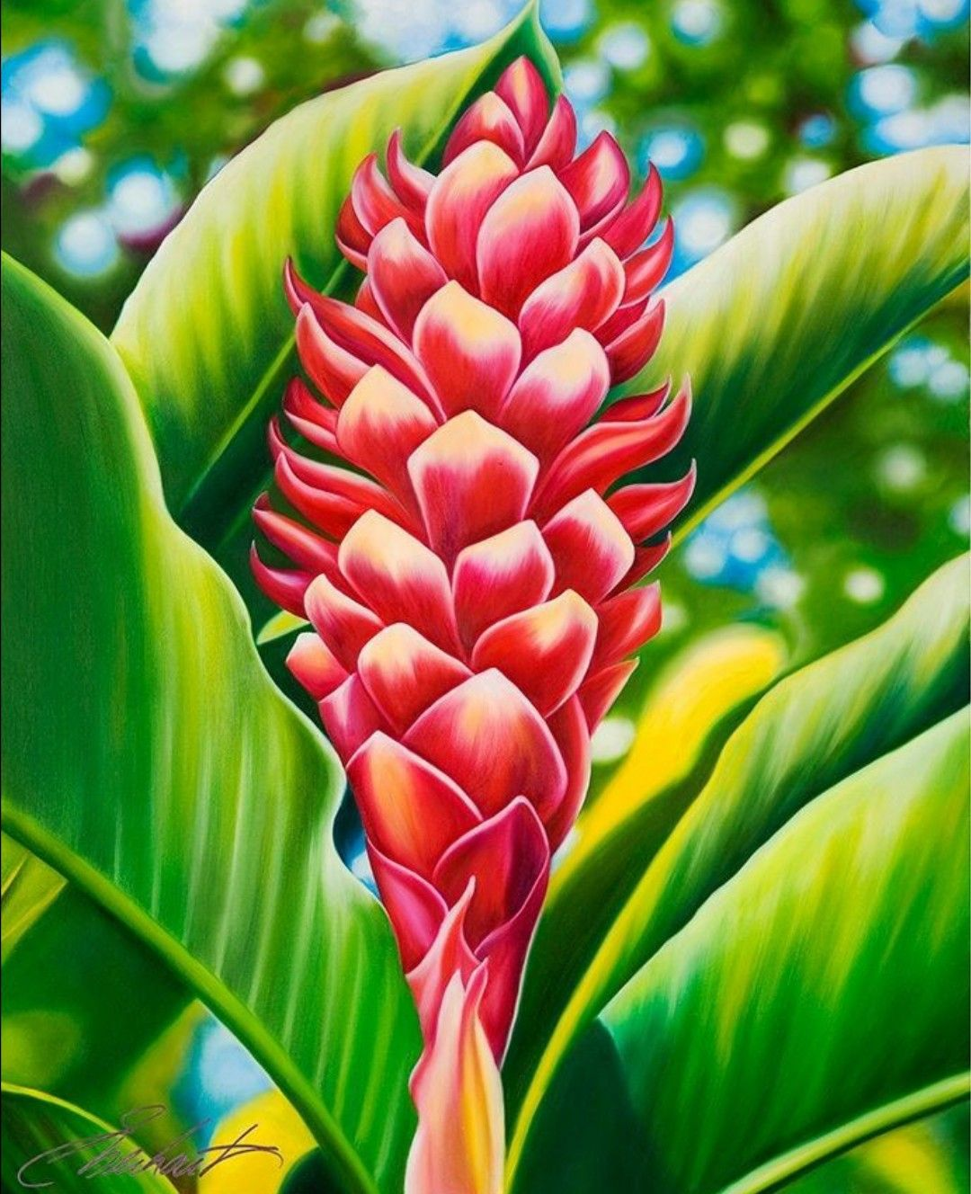 Pin by Jennie Bshara on Acrylics Tropical painting