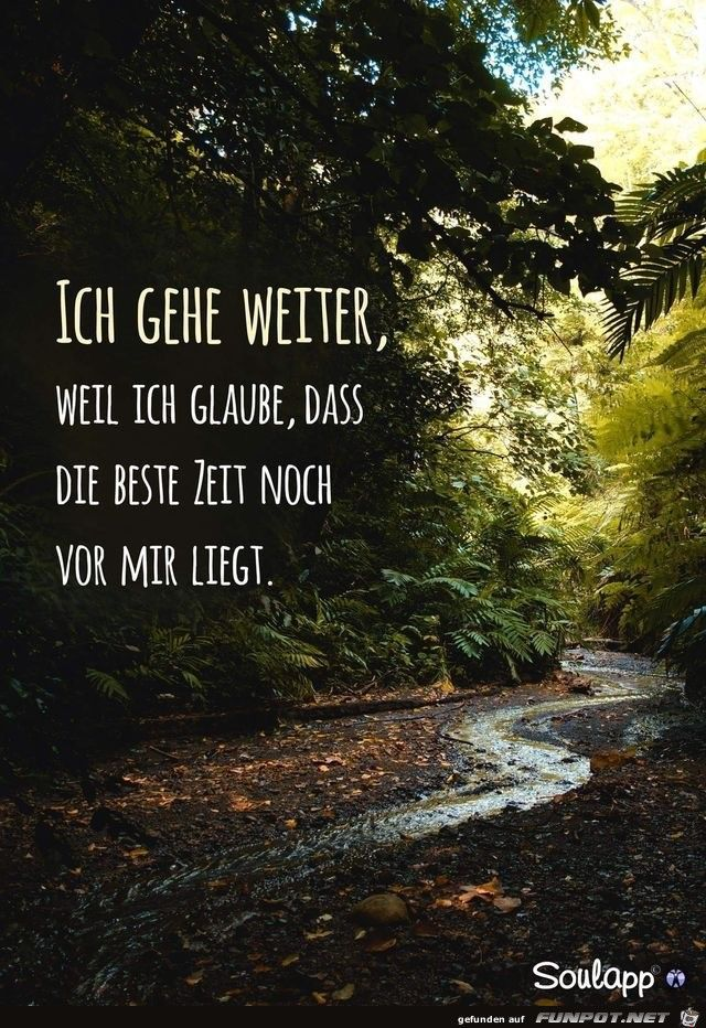 10 schöne Sprüche und Lebensweisheiten aus...,  #aus #lebensweisheiten #schone #spruche #und