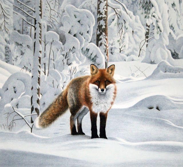 Nordic Thoughts: 'Fox' by Staffan Ullström