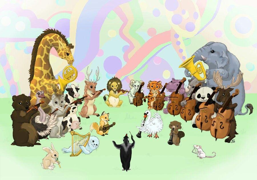 Animal orchestra | Inspirasional
