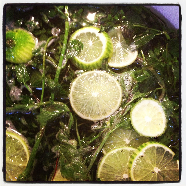 Minze Limetten Sirup Lime Mint Syrup Mojito Chaipirinha Limetten Minze Mojito