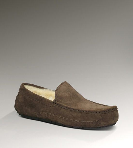 Mens Ascot By UGG Australia available at #Binns of Williamsburg