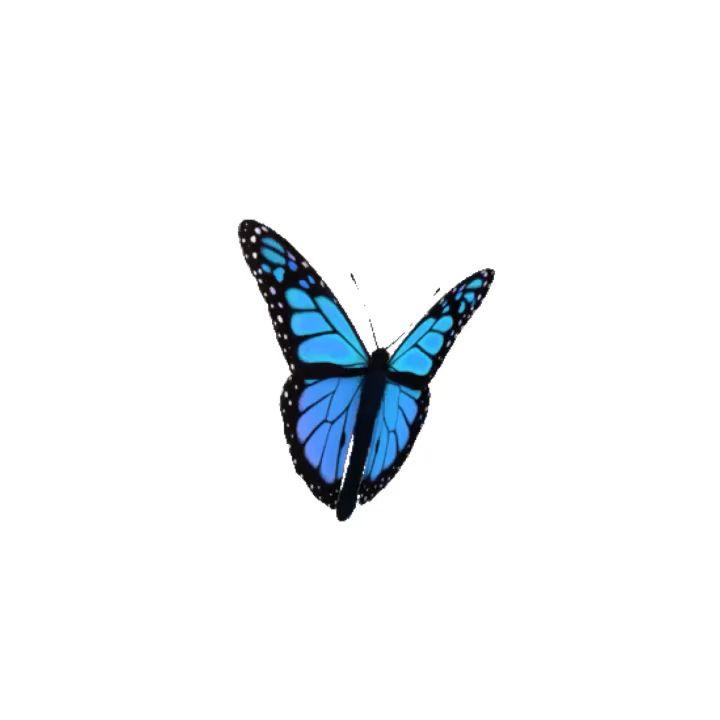 ¿Qué cambió la oruga para convertirse en mariposa?