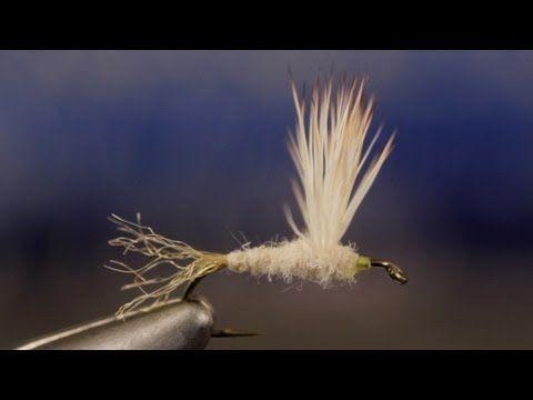 ▶ Cream Cahill Sparkle Dun - YouTube
