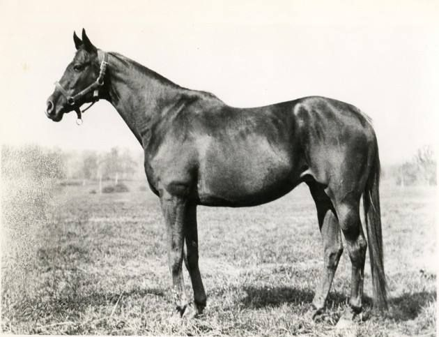 The first filly to ever win the Kentucky Derby.The one and only REGRET.