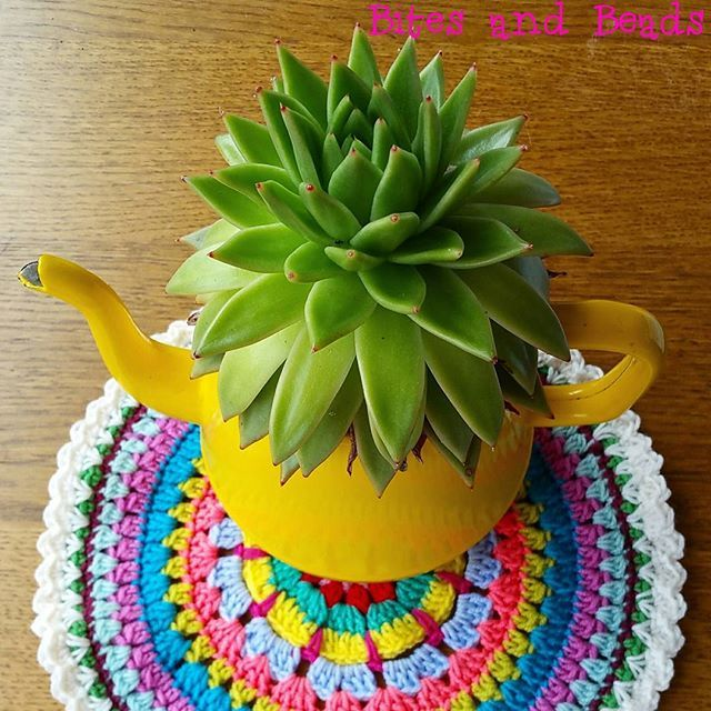 Buiten regen, daarom maar een zonnig plaatje! Fijne zondag allemaal!  #haken #hekle #häkeln #virka #virkning #haeklen #gehaaktedoily #mandala Outside it's raining, therefore a sunny picture! Have a nice Sunday!  #crochet #faireducrochet #crochetdoily #crochetmandala #craftastherapy_texture #mondiyamoi