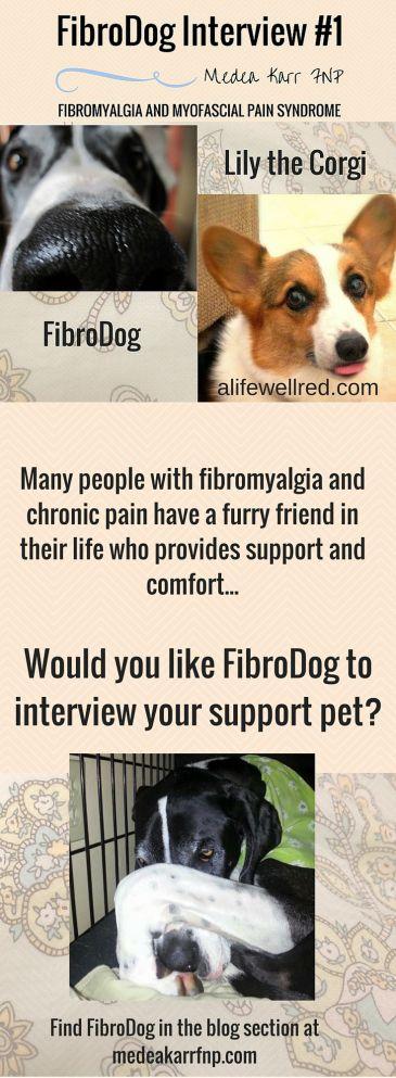 FibroDog   Medea Karr FNP   A Resource Site for Fibromyalgia & Myofascial Pain Syndrome