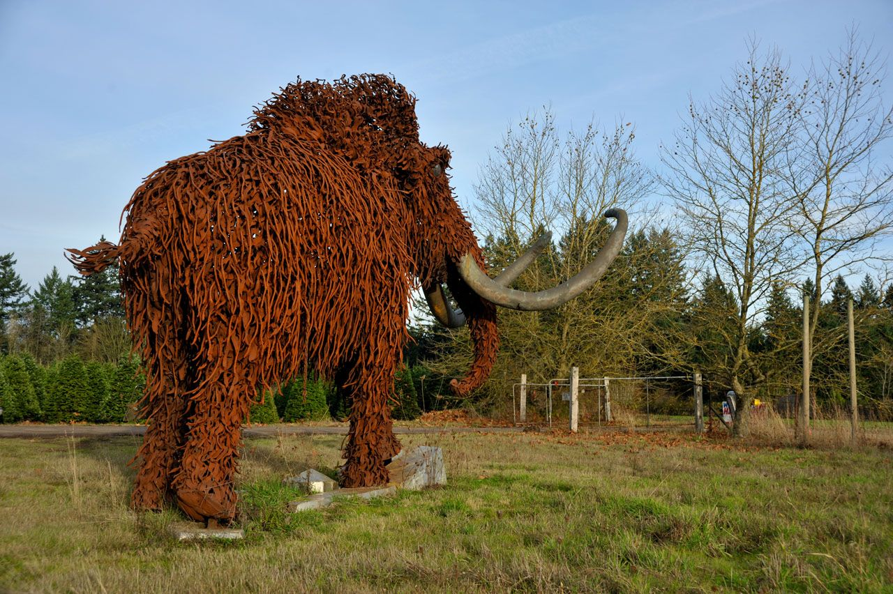 """Woolly"" metal mammoth sculpture."