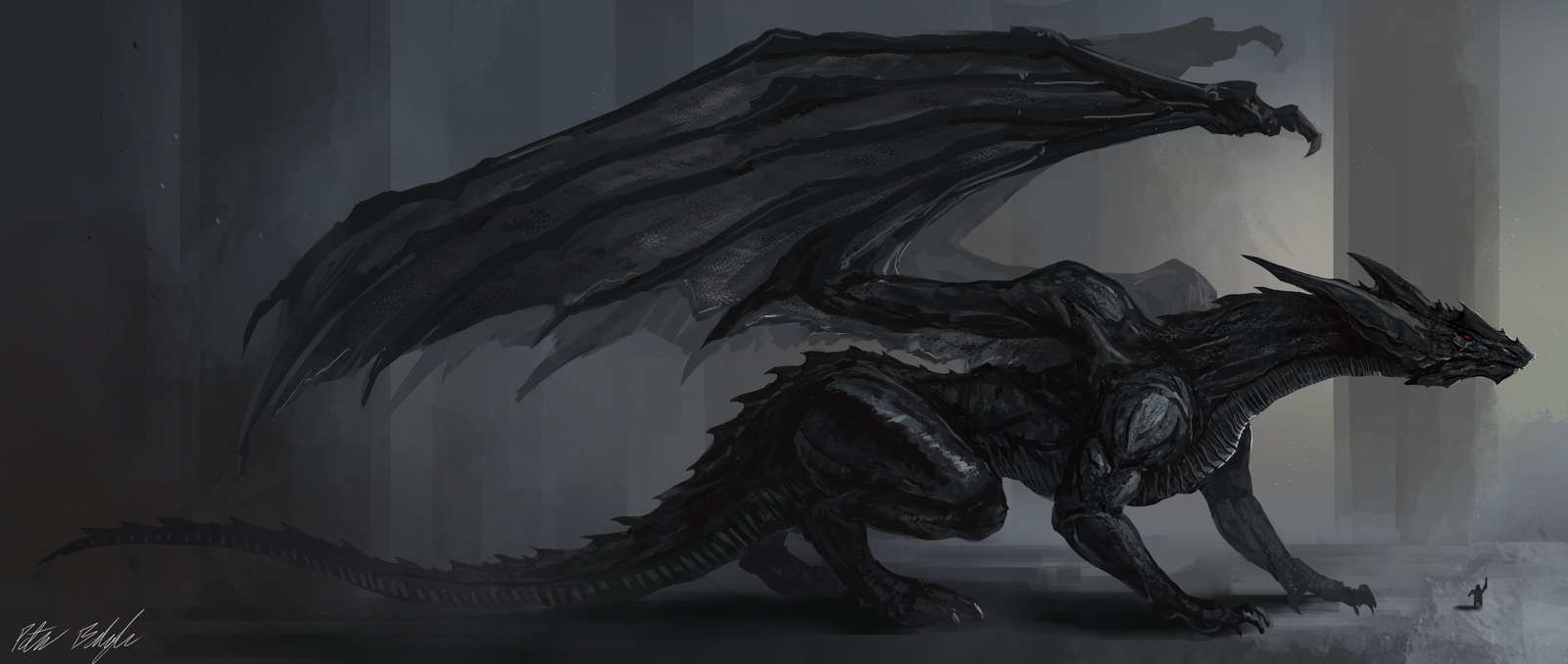 X Dragon Wallpaper High Quality Photos Of 1058 756 Black Dragon