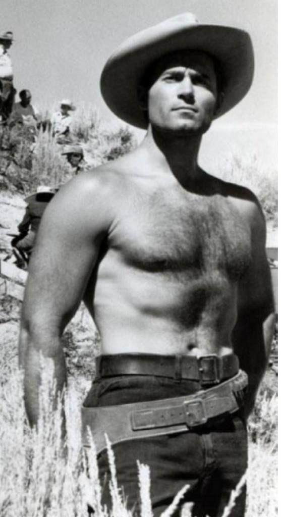 Robert Conrad | Robert conrad, Shirtless, Movie stars