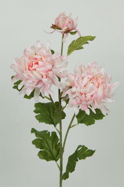 Light Pink Chrysanthemum Google Zoeken Flower Arrangements Wedding Flowers Chrysanthemum