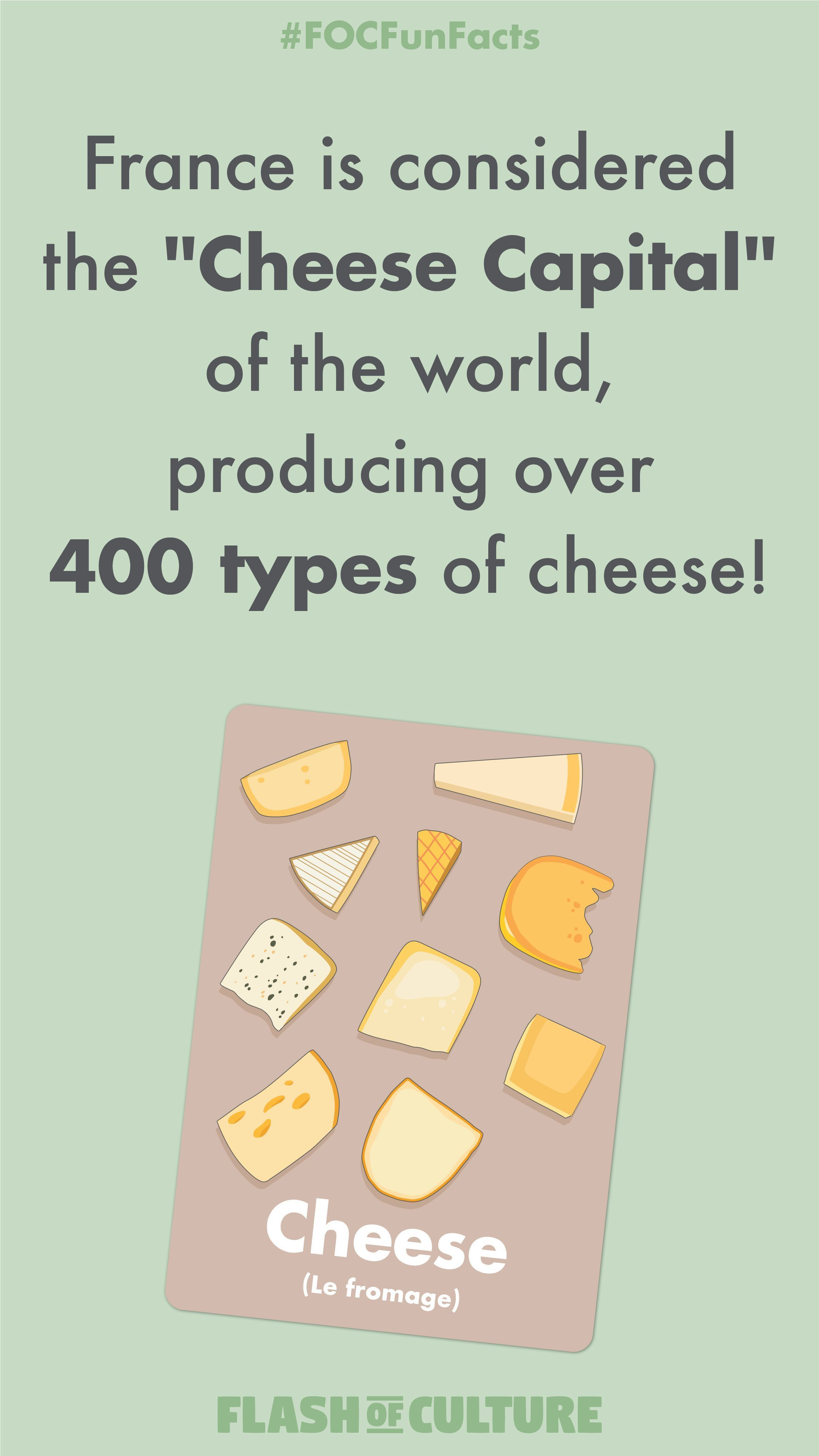 Did You Know France Has 400 Different Types Of Cheese