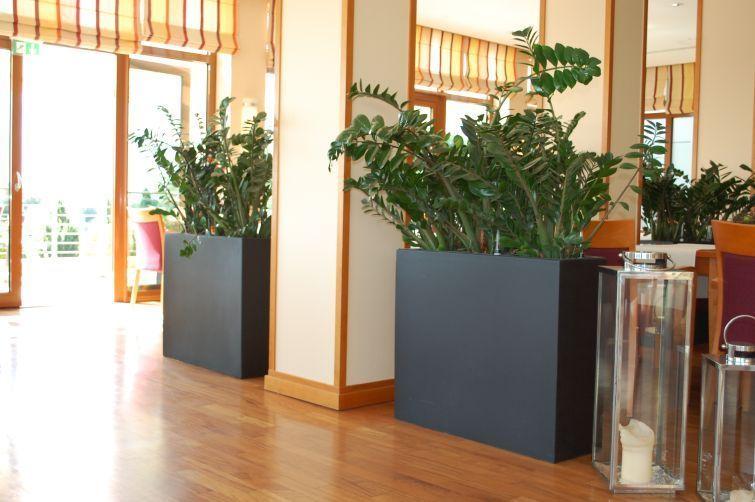 pflanzk bel als raumteiler sichtschutz aus fiberglas anthrazit pflanzk bel sichtschutz. Black Bedroom Furniture Sets. Home Design Ideas
