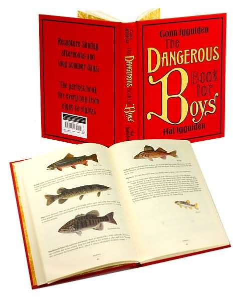 Dangerous Book For Boys Movie