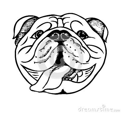 line art_french bulldog royalty free stock images image 36833959