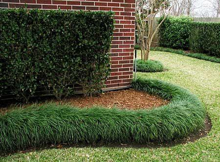 mondo grass bordering #LandscapeEdging
