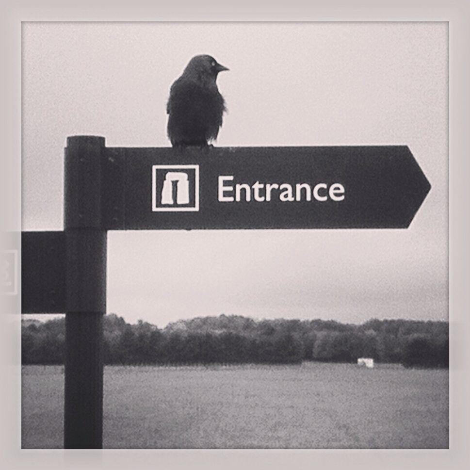 Stonehenge - England Photo by Melina Muzzin
