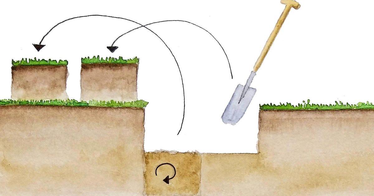 Hollandern Umgrabe Technik Gegen Bodenverdichtung Exotische Zimmerpflanzen Garten Umgraben Nachhaltige Landwirtschaft