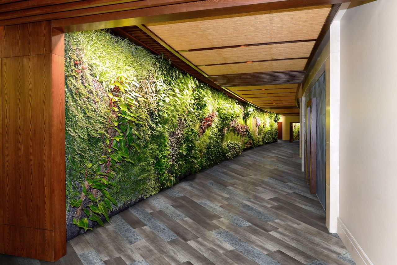 Biophilic Design Is At The Heart Of Aspecta One Ornamental