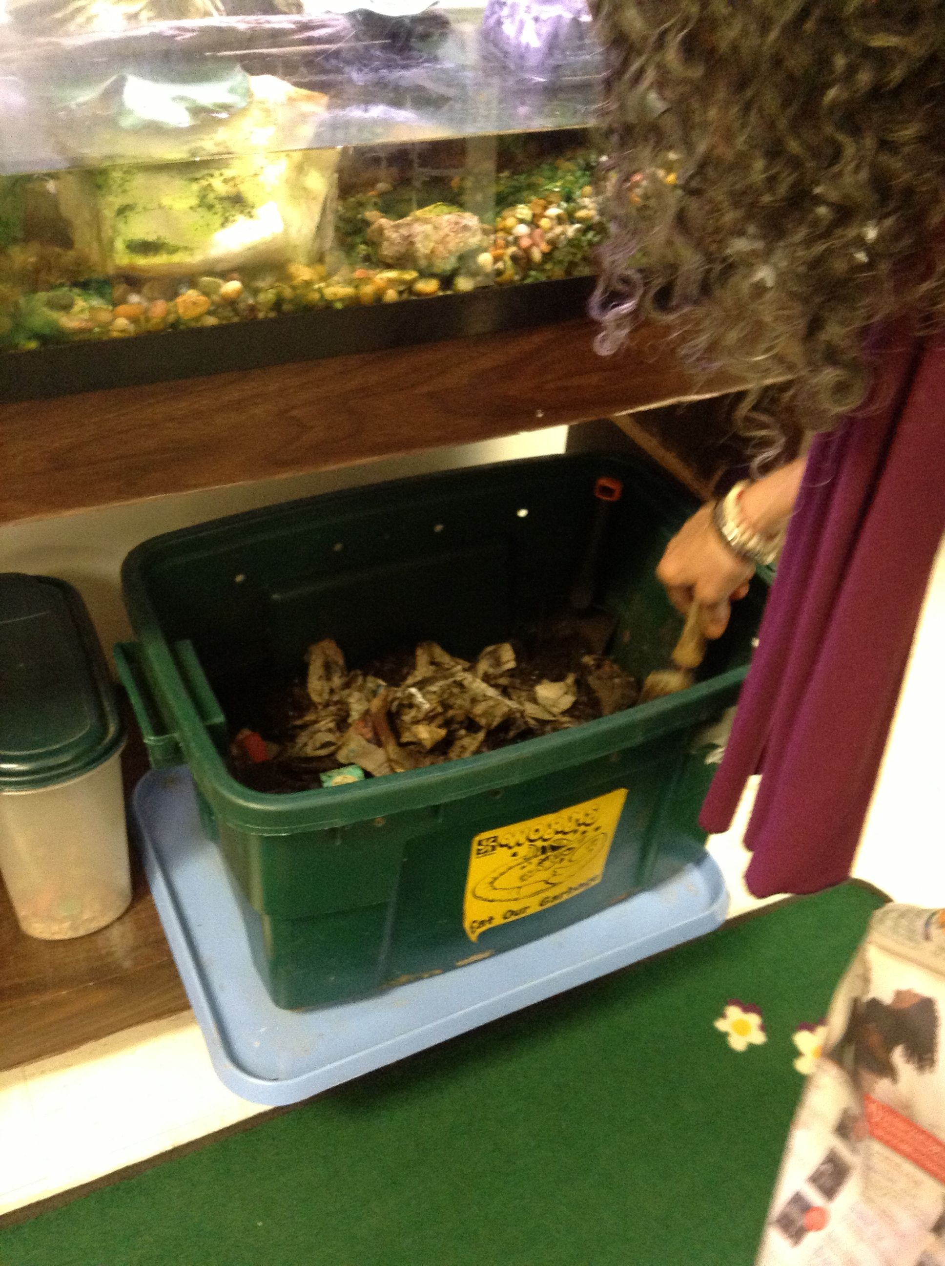Making Their Own Mulch Composting Worms And Other Bugs